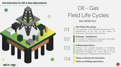 Field Life Cycles: Introduction to O&G Projects and Operations.